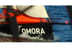 Omora, un ejercicio de trabajo colaborativo